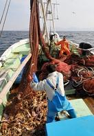 ■東区で産地直送の海鮮を■
