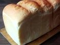 ≪当店人気のパンをご紹介≫もとまち食パン…シンプルに焼き上げた山食パン。もちもち、しっとりに仕上げています