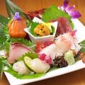 料理メニュー写真旬の鮮魚お造り ~各種~