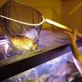 魚鮮水産 中野北口店の雰囲気2