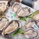 本日の生牡蛎※時期により品物と価格が変わります☆