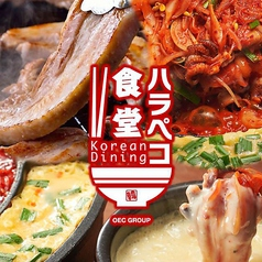 Korean Dining ハラペコ食堂 GEMSなんば店の写真