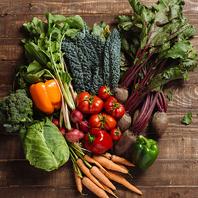 自社農園の有機野菜