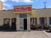 インドレストラン ピーコック Peacock 秋田市のグルメ