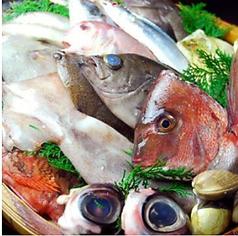 魚処 さかづき 明石の写真