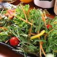 ランチタイムは嬉しいサラダバー付き★ カウンターに並ぶ採れたてお野菜たちはまさに「農家の台所」!!