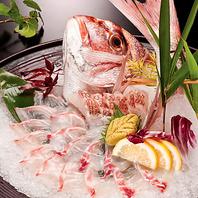 自分で釣った魚を最高の方法で調理!
