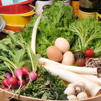 地元契約農家さんから直接仕入れる新鮮野菜♪