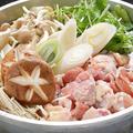 料理メニュー写真佐賀ふもと赤鶏の水炊き