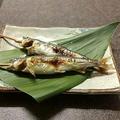 料理メニュー写真鮎の塩焼き