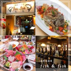 海鮮居酒屋 fish&fishの写真