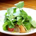 料理メニュー写真北海道ホタテと白菜クレソンのソテーサラダ