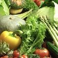 【厳選素材・野菜】千葉県の有機野菜農家から仕入れた安心安全食材。