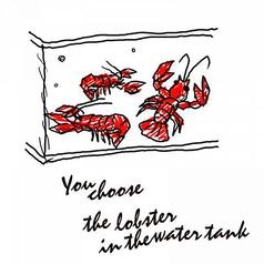 【1】まずは、店内の大型水槽で回遊中の活オマール海老を品定め♪