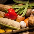 四季に合わせた新鮮なお野菜をご提供。