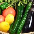 野菜は農家直送食材