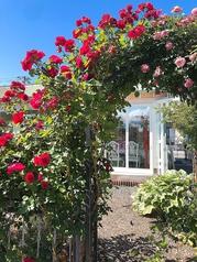 リトルコテージ ガーデンカフェの写真