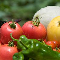 地元の新鮮食材を使用