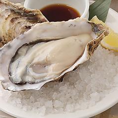 料理メニュー写真本日の厳選生牡蠣 1ピース