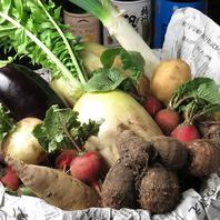 採れたての有機野菜をご堪能下さい◎