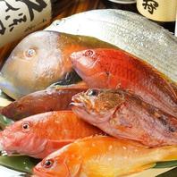 鮮度が命!自慢の海鮮をお楽しみください