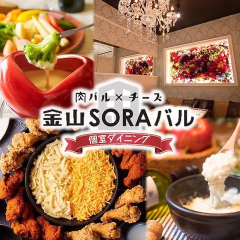 チーズ&肉バル 金山SORAバル
