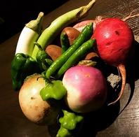 自社農園で無農薬野菜を育てています
