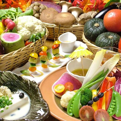 店内まるごとお野菜&豆富料理にこだわった創作和だいにんぐ!新作料理&カクテル続々