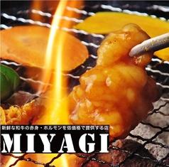 MIYAGIの写真