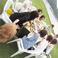 【ペット同伴可】テラス席はペット同伴OK♪わんちゃん用ご飯もございます♪ ※簡易的な無料ドックランも芝生にございます。(パーティーの為、撤去している事もございますので、ご希望の方はお気軽にお問い合わせください。)