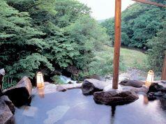 ビアンヴェニュ 蓼科温泉ホテル親湯のおすすめポイント1