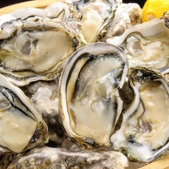 料理メニュー写真ニュージーランド「生牡蠣」