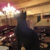 【黒猫】…料理の美味しい香りと楽しそうな声に誘われて黒猫が良く遊びに来ます。きっと今日も1Fのどこかにいると思いますよ♪