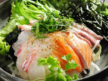 shinka 511のおすすめ料理1