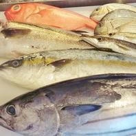 小田原直送の鮮魚