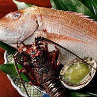 その日の朝獲れ天然活〆鮮魚で彩る