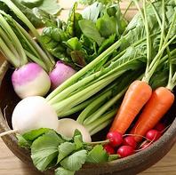 【生産者から直送!】群馬県産の有機野菜