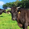 黒毛和牛は色合いやサシの具合、牡牝の違い、脂の質感などその部位の性質と個性を判断し、見極めて調理しないとせっかくの素材の良さが活かされません。スライスの厚みを調整、隠し包丁を入れスジっぽさを感じさせないなど熟練した技で初めて黒毛和牛の旨さが活きます。