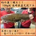 【どデカイ!!】10kg超える魚が勢揃い!クエが入荷することも!!定期的に解体ショーも開催しております!開催日時はDMにてお知らせいたします。お待ちください。