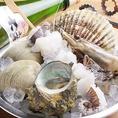 生牡蠣・蒸し牡蠣・焼き牡蠣の他、グラタンやカキフライなど牡蠣メニューが充実★柏で牡蠣や海鮮を楽しむなら「かき小屋」へ!!その他の海鮮も種類豊富にご用意しております。
