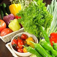 農家野菜 ふたご家の特集写真