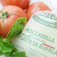 【今月のこだわり食材】週に一回イタリアから空輸で取り寄せるCIACATELLIのモッツァレラ