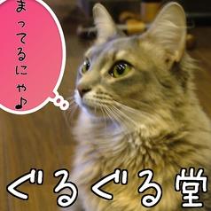 猫Cafe ぐるぐる堂の写真