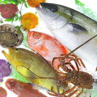 長崎県産の獲れたて鮮魚