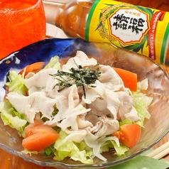 琉球料理 寿し おもとの特集写真