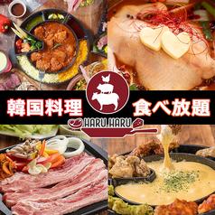 Haru Haru 名鉄岐阜駅前のおすすめ料理1