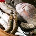 築地直送鮮魚のお刺身は食べ応え抜群です!鮮度の良い良質なものだけを料理長が厳選し、ご提供させて頂きます♪四季折々の一番美味しい旬の魚をご提供致します。お刺身盛り合わせなどでお魚の旨味をご堪能下さい。お刺身盛り合わせの付いた飲み放題付プランも多数ご用意!