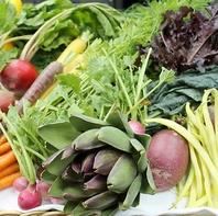こだわりの旬の野菜を豊富にご用意しております