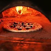 【職人が石窯で作るピッツァ】イタリアの窯職人が手掛けたピザ窯。窯で焼くから表面がパリッとしていて、中はふんわりもっちり♪