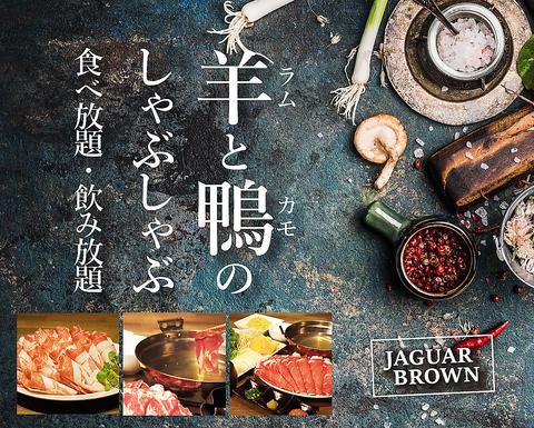 Jaguar Brown 秋葉原店